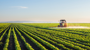 Soybeans Close Off Lows, Fall Below $10.00 Mark Friday