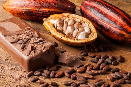 cocoa-chocolate-450x299