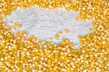 USDA Crop Progress: Corn's 'Class of 2018' Has Emerged